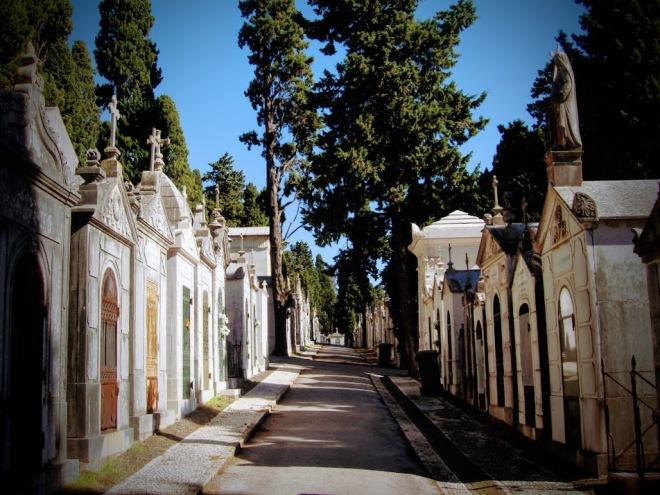 cemiterio prazers